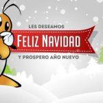 Desde Denox les deseamos Felices Fiestas